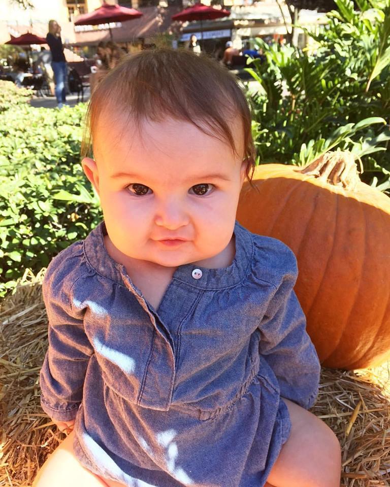 pumpkin baby photo